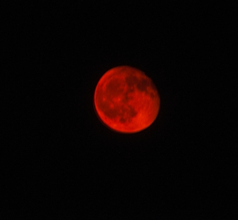 Blood moon 0241 600mm