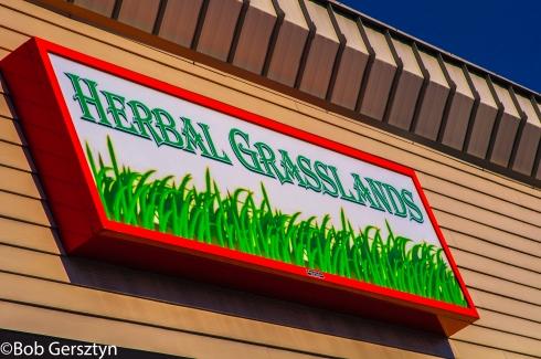 Herbal Grasslands 0062 copyright